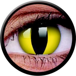 Cats Eye (3 Monatslinse) (1x2)